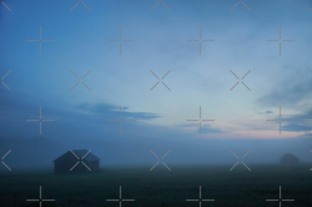 Misty Summer Night by marina63