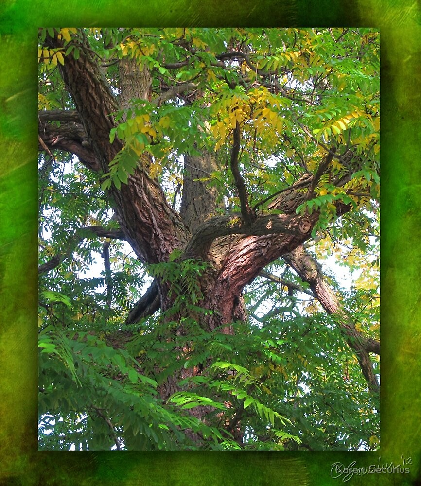 beneath the bough... by Karen  Securius