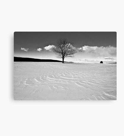 Winter is Comin' Canvas Print