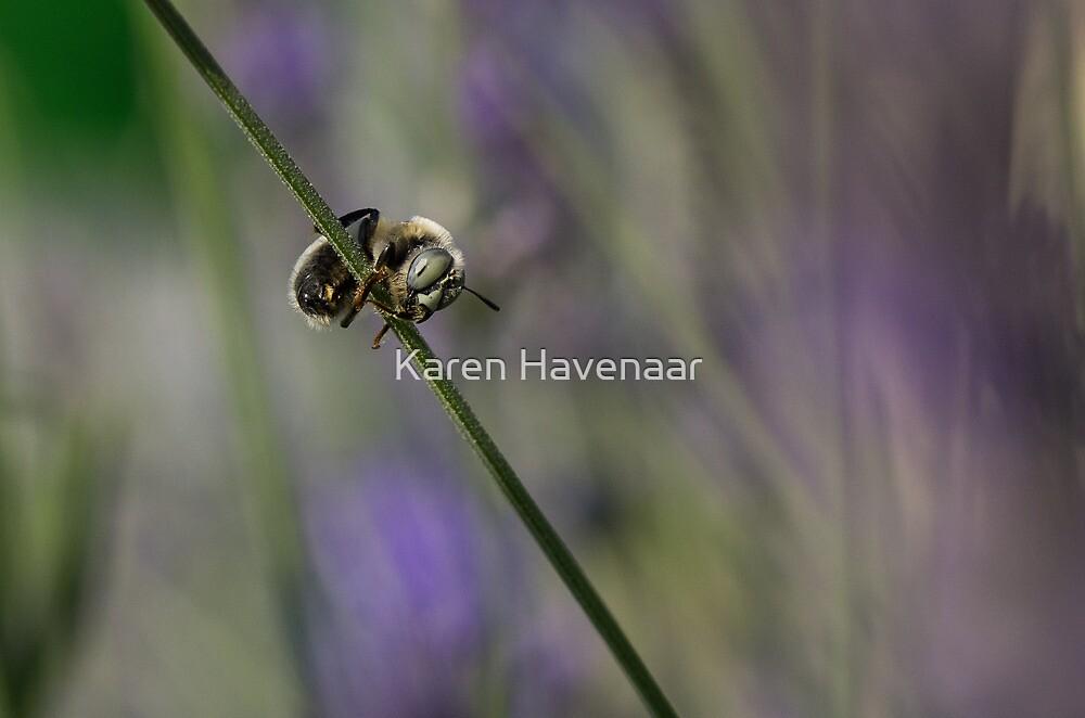 Balancing by Karen Havenaar