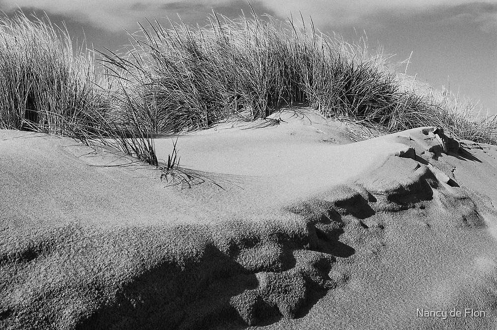 Sand dune on Staten Island by Nancy de Flon