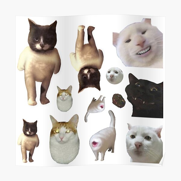 Pack of 12 Cat Memes Sticker Combo - MORE Obscure Cursed Cat Memes 2 Poster