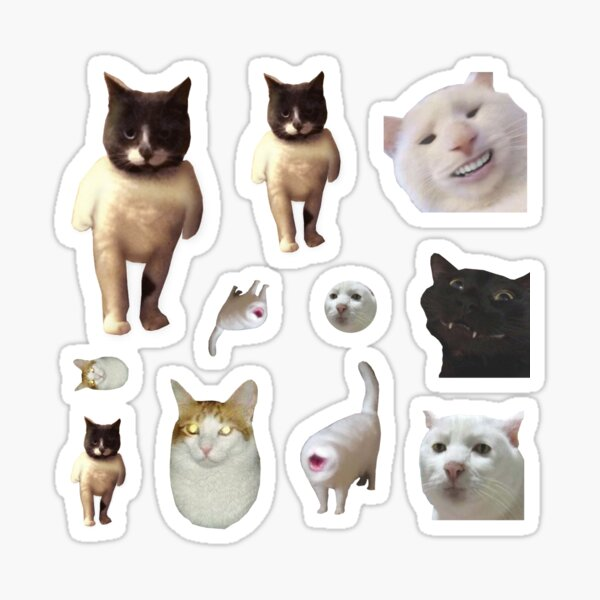 Pack of 12 Cat Memes Sticker Combo - MORE Obscure Cursed Cat Memes 2 Sticker