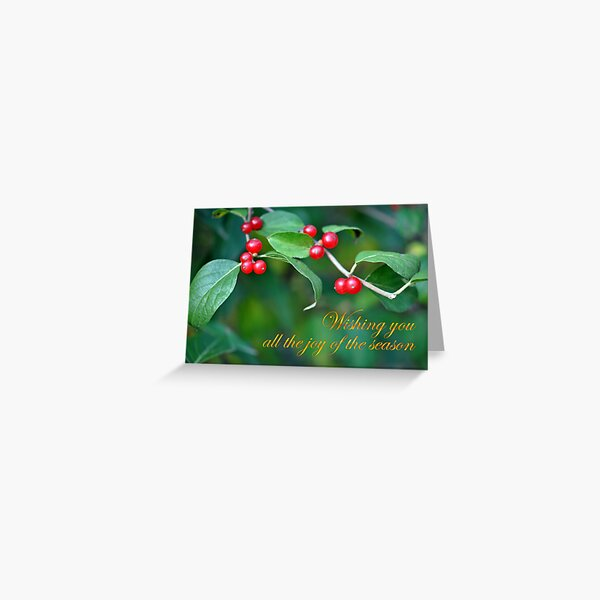 Berries--Holiday Card Greeting Card