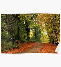 Autumnal return Poster