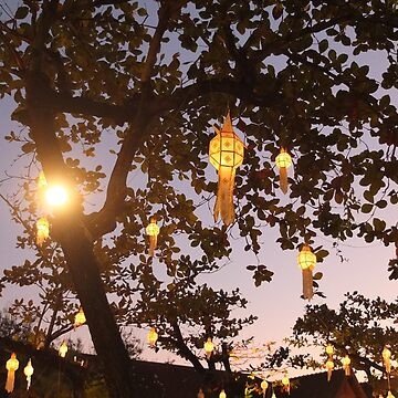 Lanterns by FesterLover
