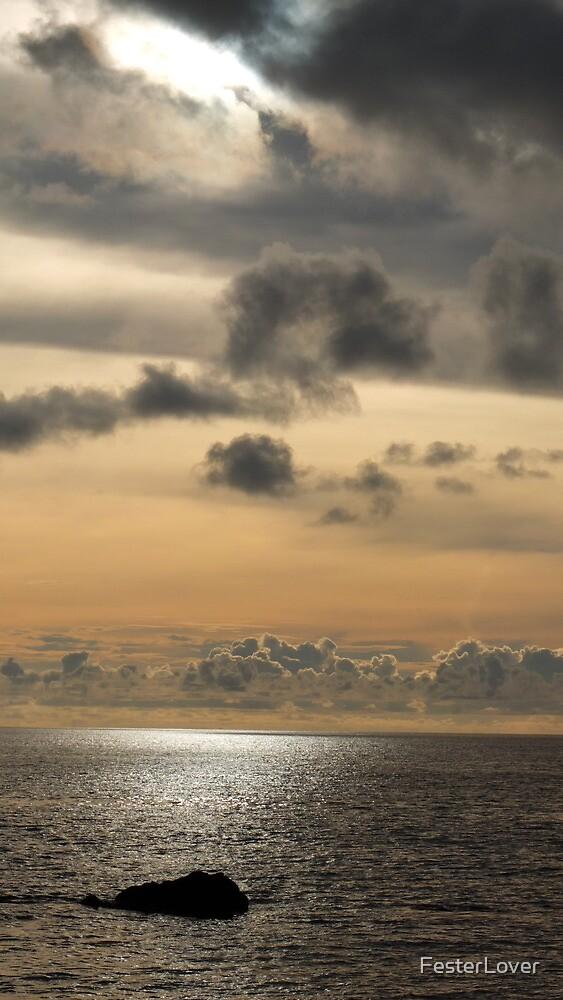 Sunset 1 by FesterLover