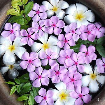 Bouquet by FesterLover
