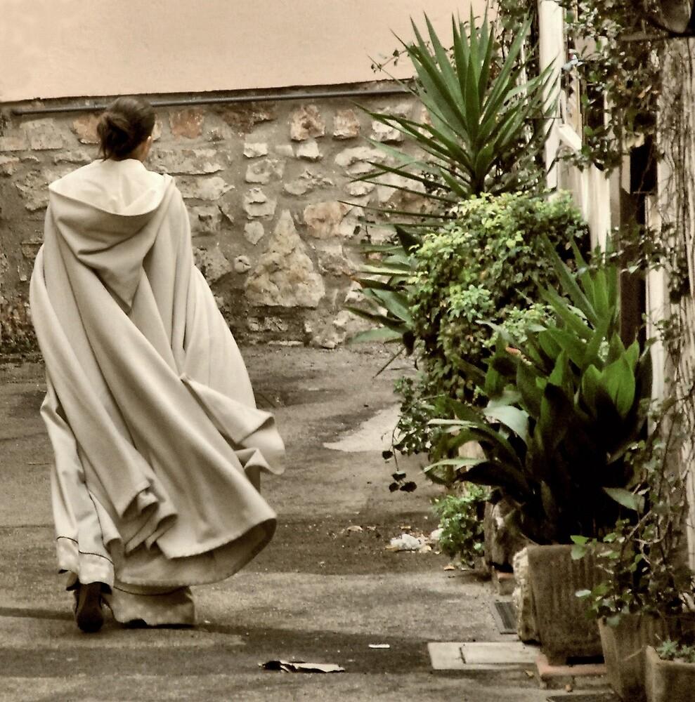 Swinging Cape-San Gemini, Italy by Deborah Downes