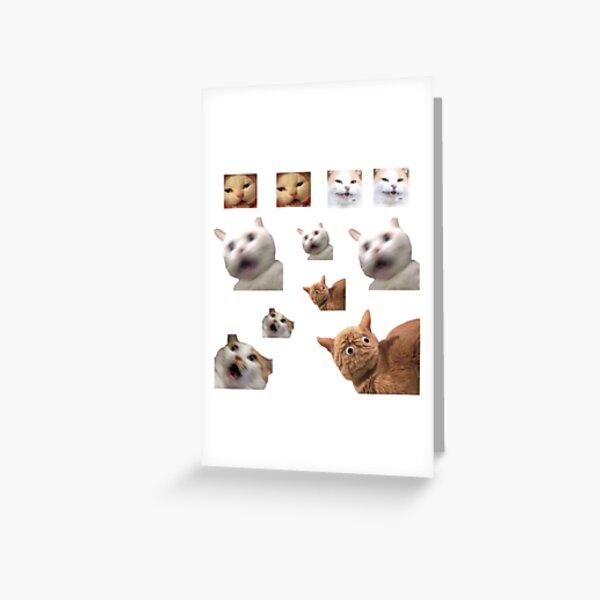 11 pack cats memes sticker combo - weird cat memes 4 Greeting Card