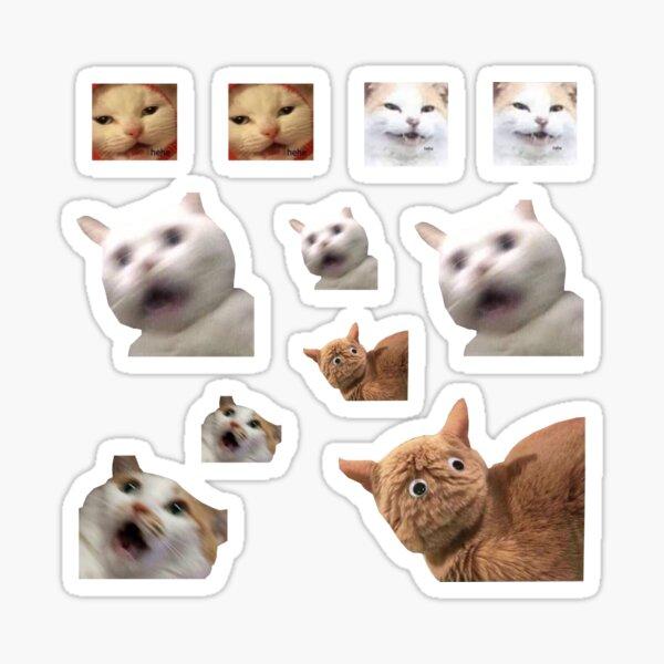 11 pack cats memes sticker combo - weird cat memes 4 Sticker