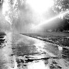 1987 - the sprinkler by Ursa Vogel
