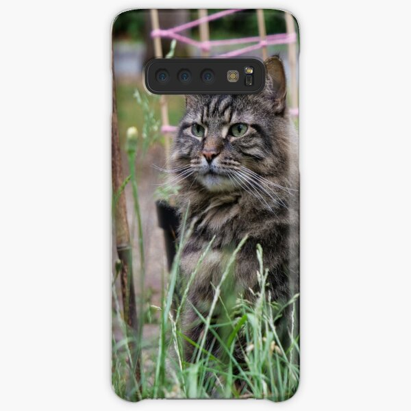 Grey tabby cat in summer looking at the poppy flower with great interest. Samsung Galaxy Snap Case