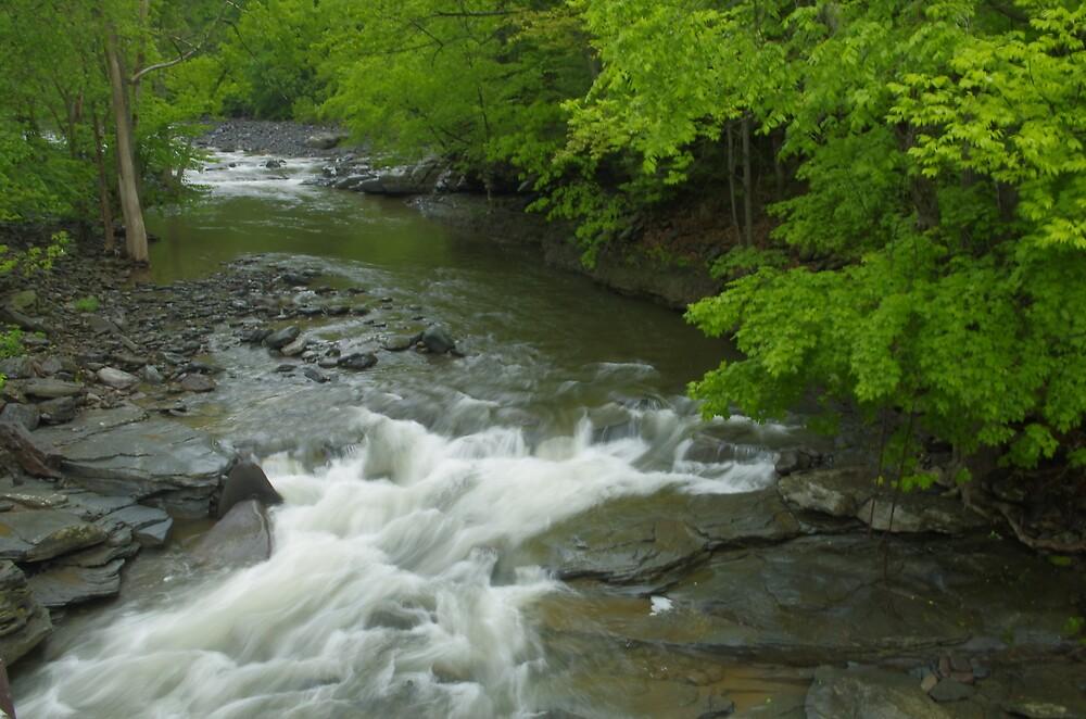 Looking Up Katerskill Creek by jpsphotoart