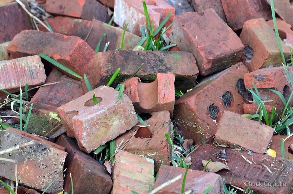 Old Bricks Strong But Discarded by Chuck Coniglio