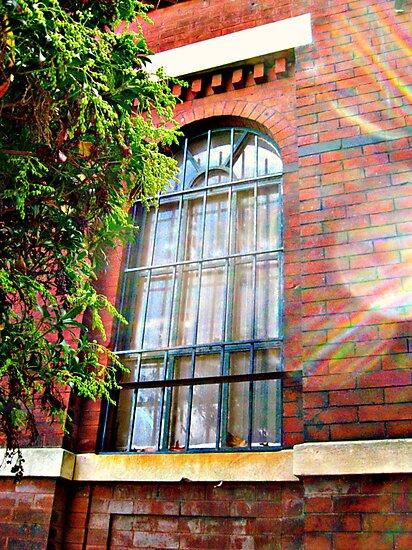 Angel Window by Jane Neill-Hancock