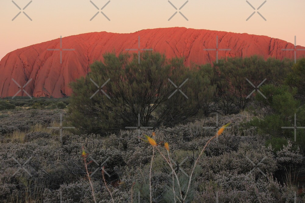 Radiant Sunset at Uluru by Kymbo