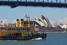 Sydney Ferry by diggle