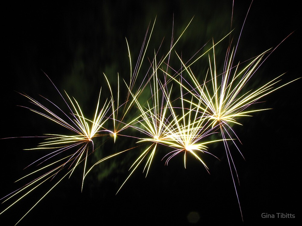 Fireworks by Gina Tibitts