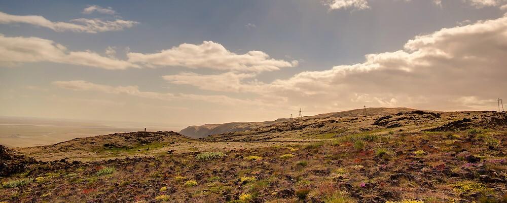 Golden Circle Lava - Iceland by YorkStCreative