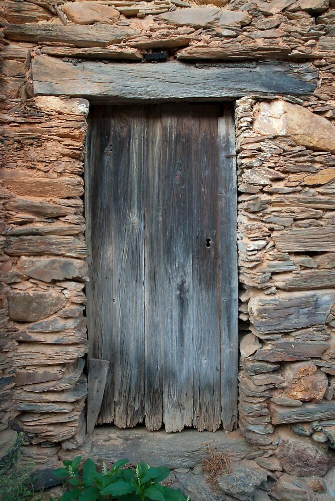 Old door by Fernando Romão