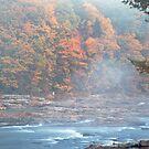 Autumn Dawn, Upstream by Paul Kavsak