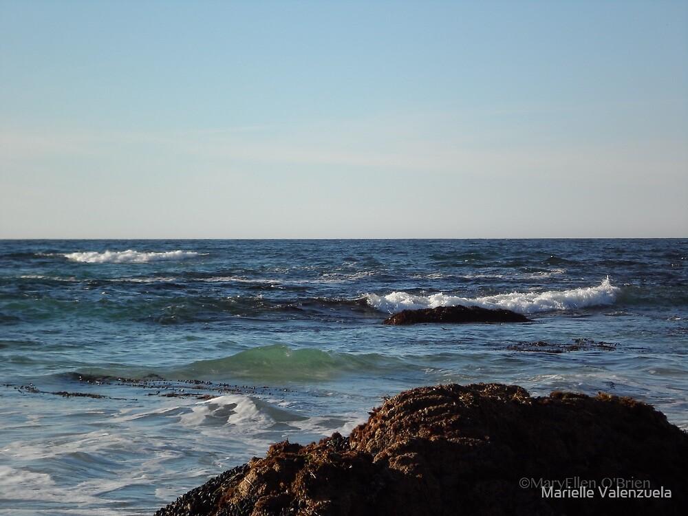 Asilomar State Beach, CA by Marielle Valenzuela
