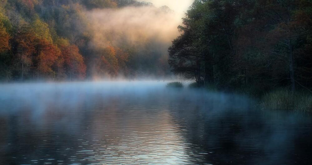 Misty Impressions by Carolyn  Fletcher
