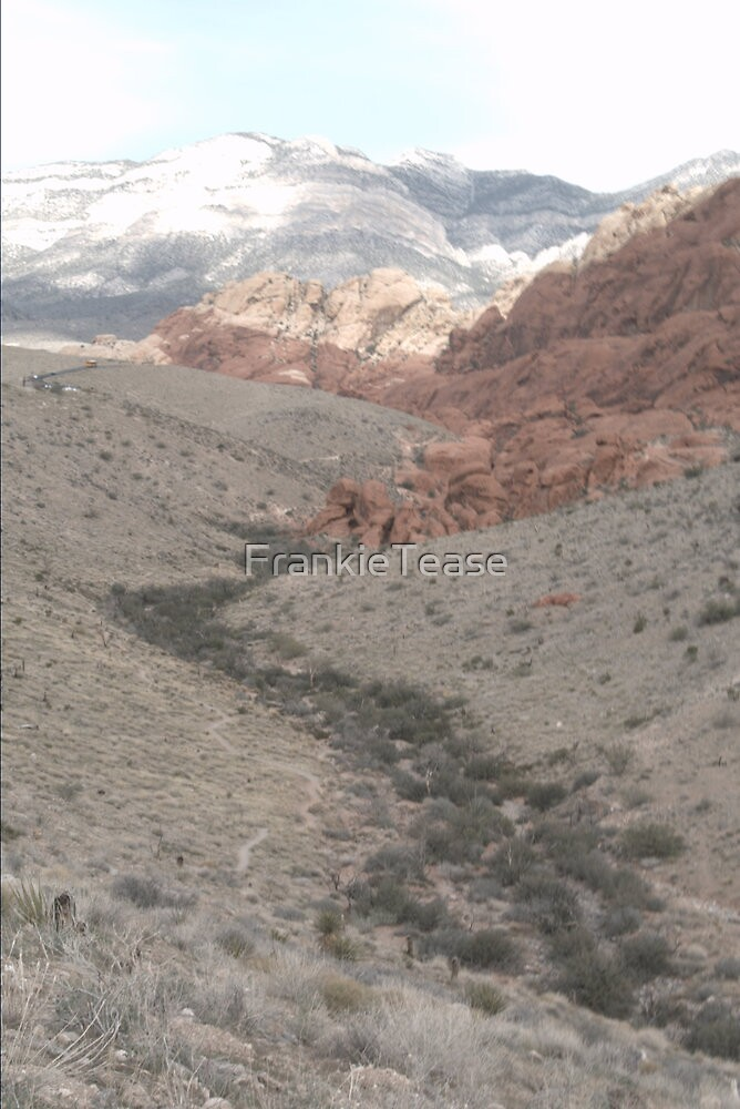 Red Rock Canyon Portrait by FrankieTease