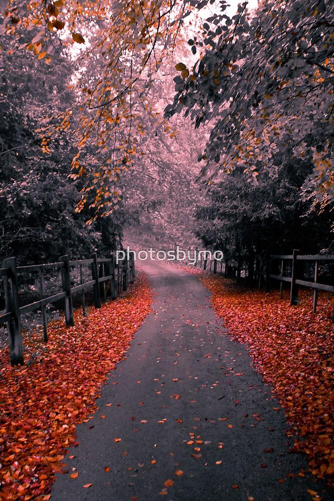 Autumn is here by photosbymo