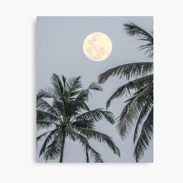 Luna llena Lienzo