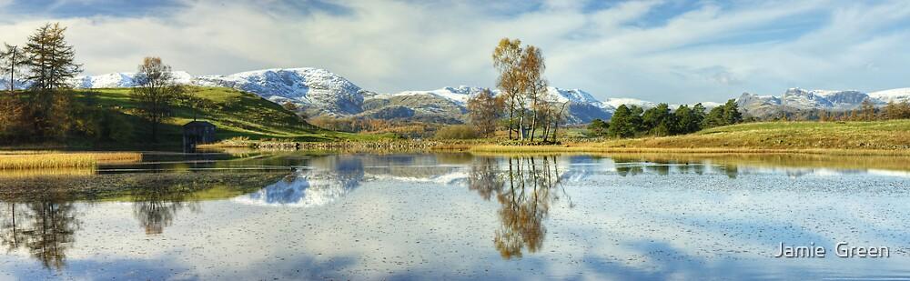 Wise Een....Autumn Snow by Jamie  Green
