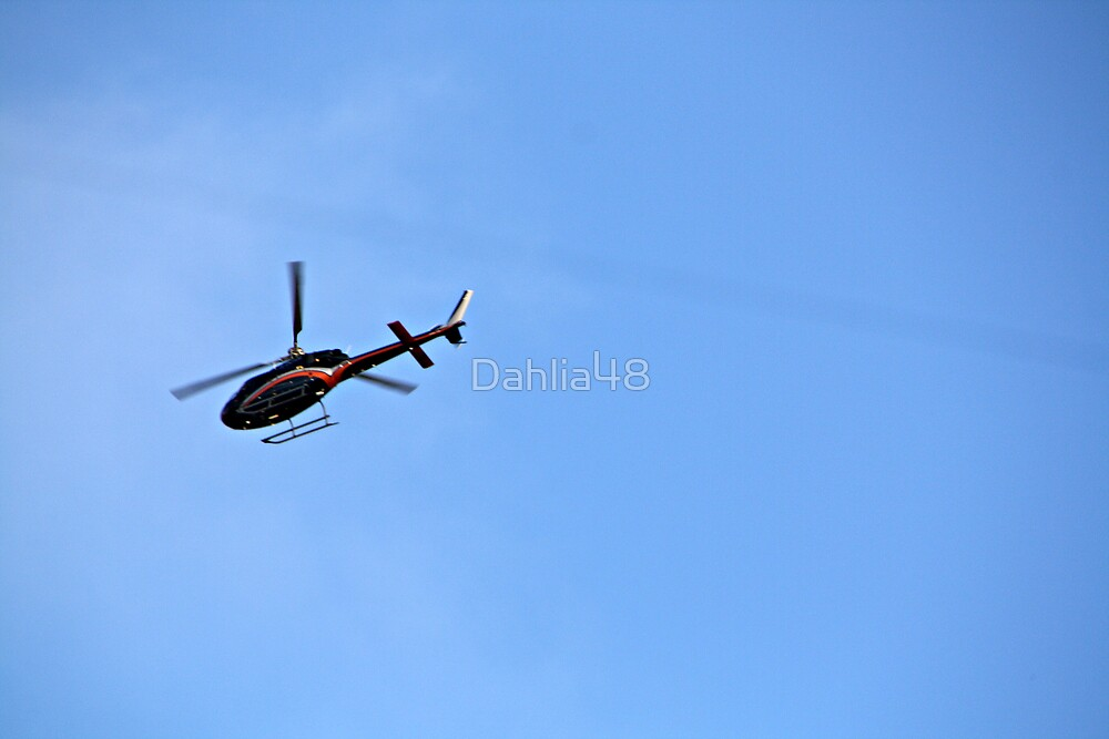 HELICOPTER TRIPS . by Dahlia48