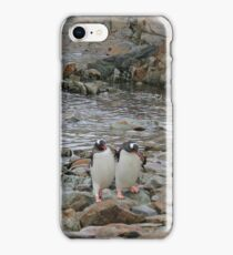 Antarctic Friends iPhone Case/Skin
