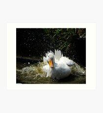 Splashing Duck Art Print