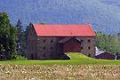 A Most Unusual Loyalsock Barn by Gene Walls