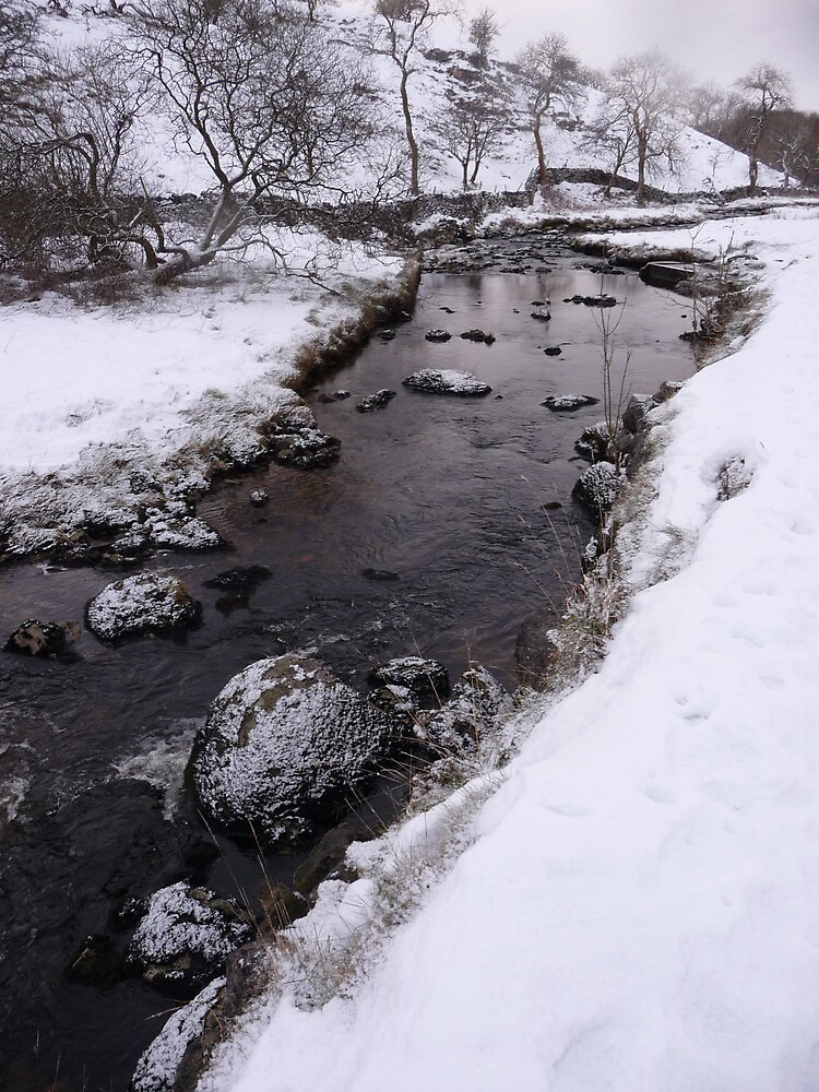 Clapham Ghyll in Winter by Paul Swift