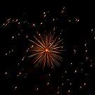 fireworks  by Steve Shand