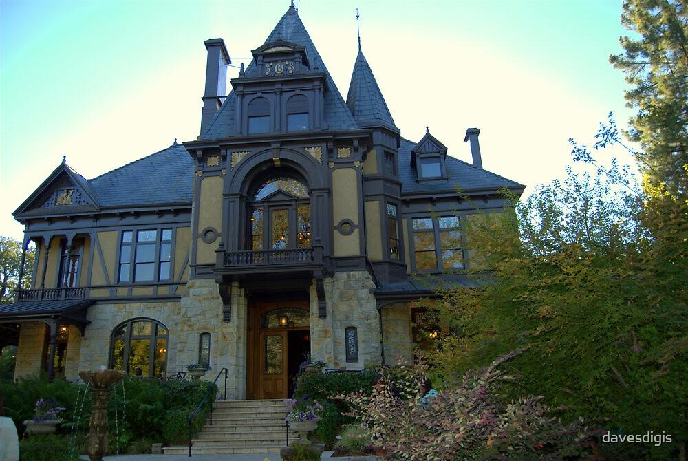 Mr. Beringer's Estate by davesdigis