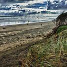 Muriwai Wind by meredithnz