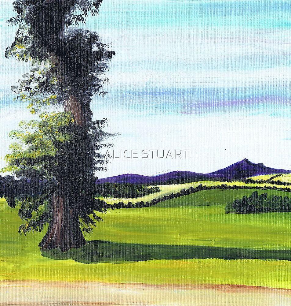 Bennachie from Lochter by ALICE STUART