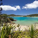 Matai Bay by meredithnz
