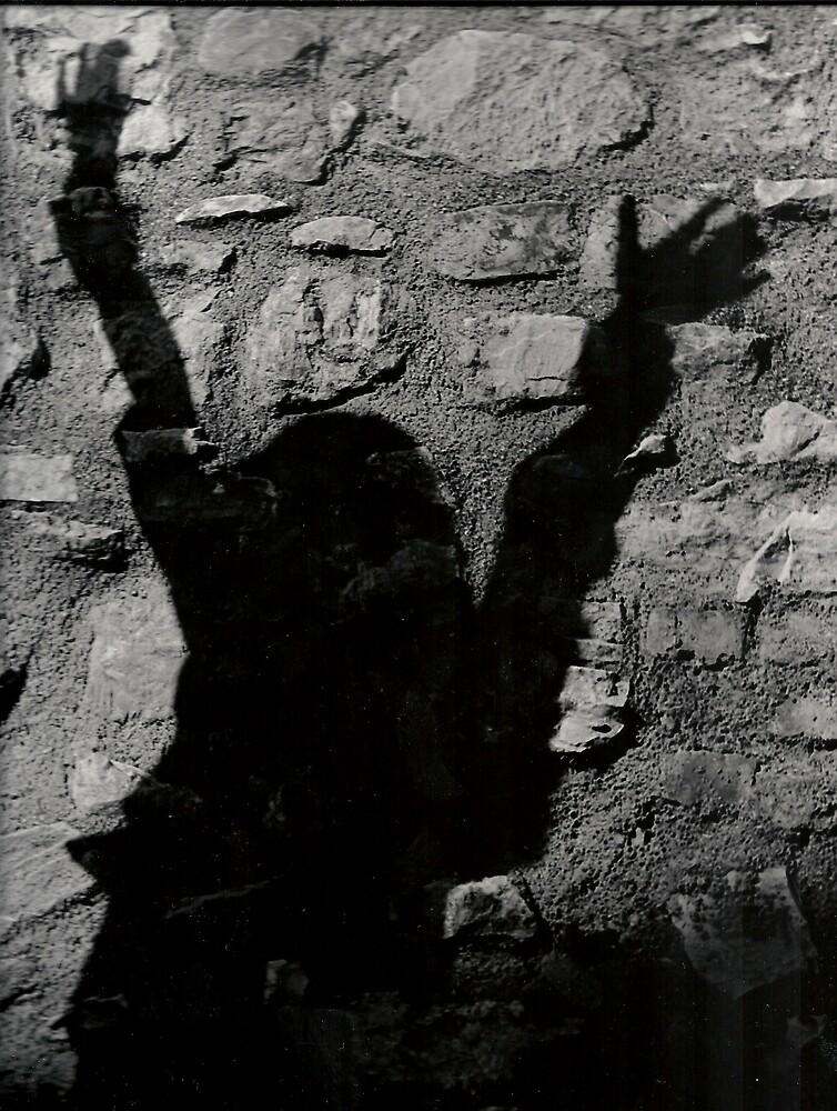 shadow by solegga68