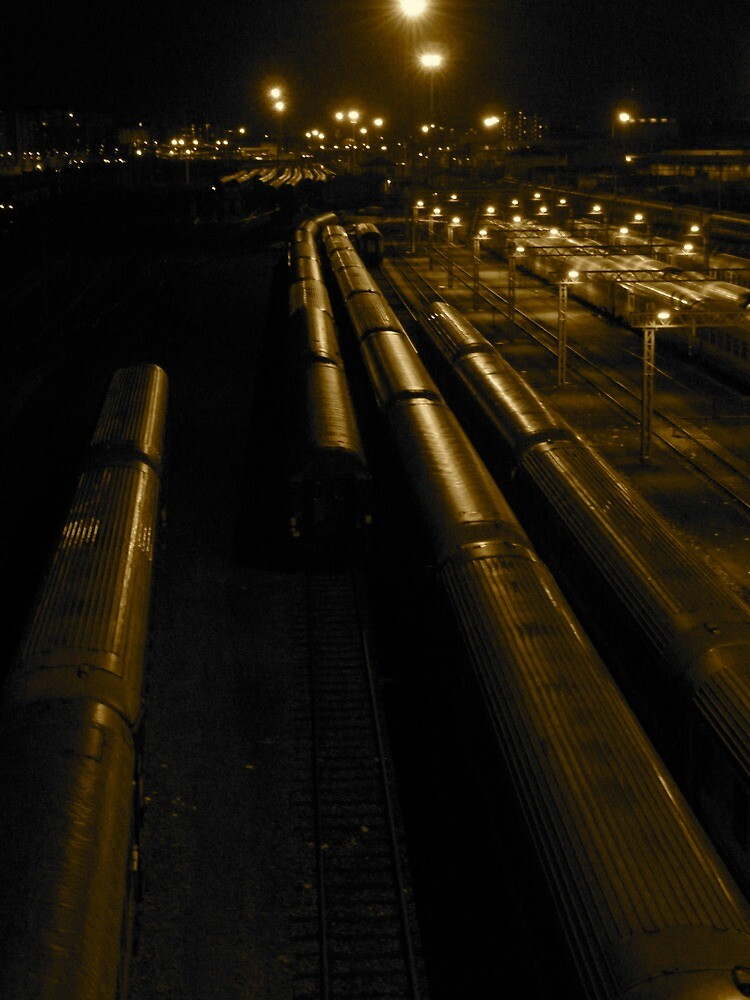 Night Train   Torino, Italy by rubbish-art