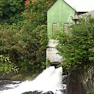 Old Electric Mill in Hilo by ronholiday