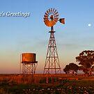 Narrandera by Darren Stones