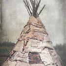 Birch Teepee by Deborah  Benoit