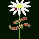 Loves me - Loves me not by Dulcina