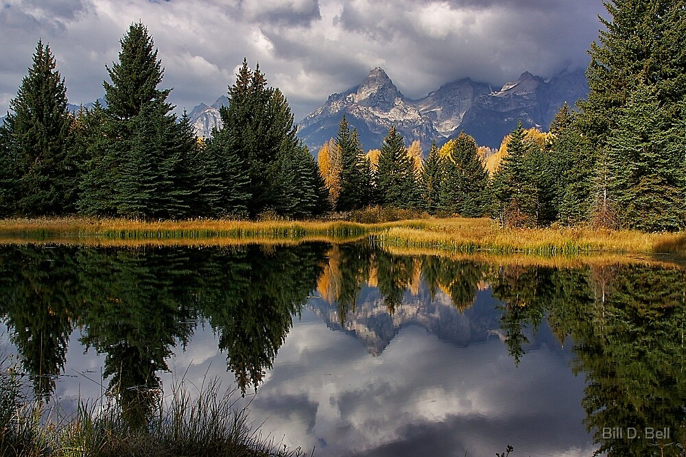 Fall Teton Reflection by Bill D. Bell