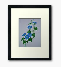 Blue Bindweed Framed Print